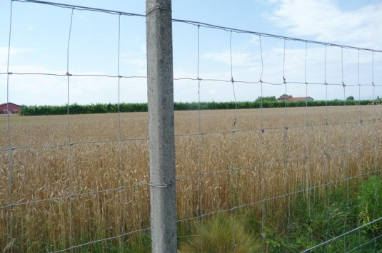 recinzioni_2